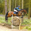 FAB16 Eventing