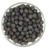 JUL16 Hawthorn Berries