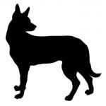 feb17-love-dogs